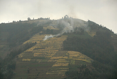 Farming by clear-cutting outside Parc National des Volcans, Rwanda.