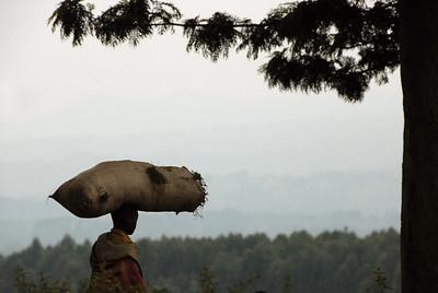 Local produce transport, rural Rwanda.