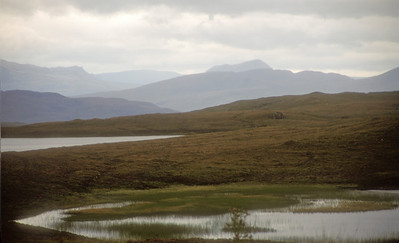 Marsh, northwest Scotland.