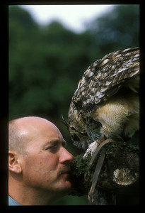 Owl and trainer, Scotland.