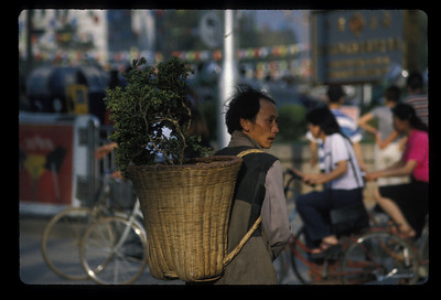 Wanna buy a plant? Singapore.