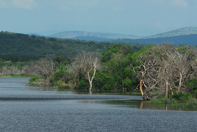 Lake near Mkuze Falls private game reserve, Kwa-Zulu Natal, South Africa.