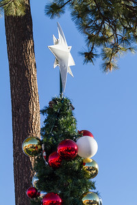 Close-up of Christmas tree with baubles and star - USA - California - Lake Arrowhead