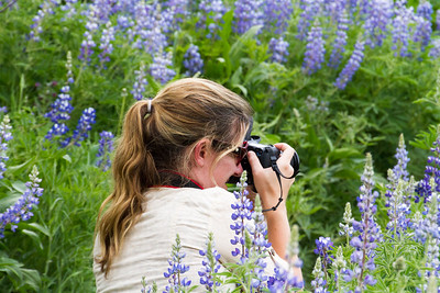 Woman taking picture of nature - USA - Colorado