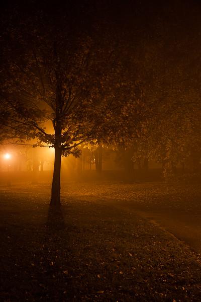 Prospect Park at Night