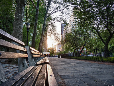 Park Bench Sunset