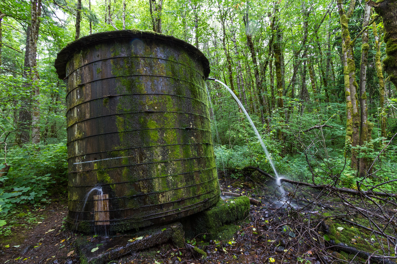 Water tank in forest - Oregon - USA
