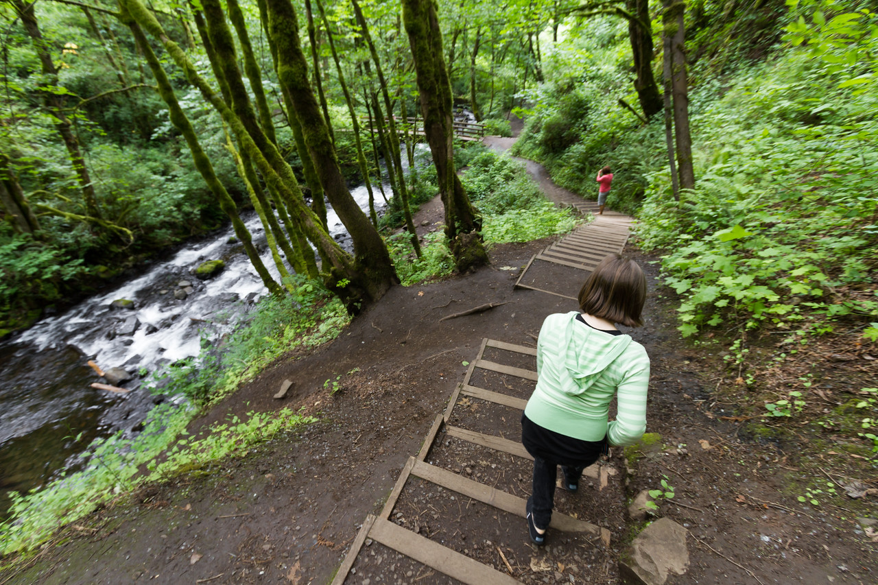 Woman walking in forest - USA - Oregon