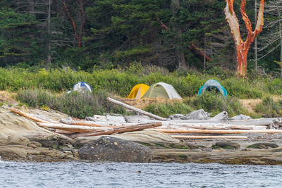 View of sea with tents - USA - Washington - Bellingham