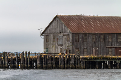 View of stilt hut - USA - Washington - Bellingham