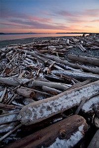Snow covered driftwoods on Double Bluff Beach - Whidbey Island - Washington - USA