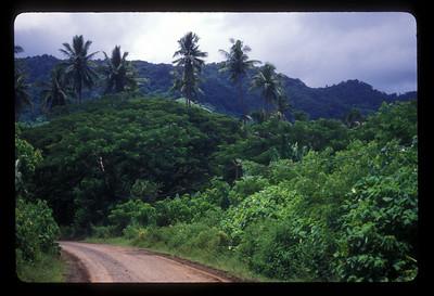 Highway, Espiritu Santo Island, Vanuatu.