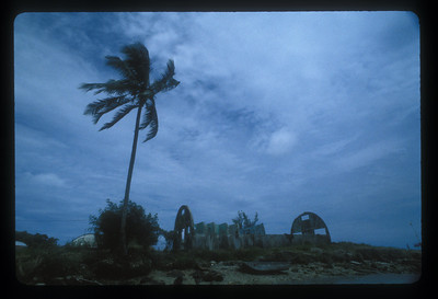 Ruin of American World War Two Quonset hut, Espiritu Santo Island, Vanuatu.