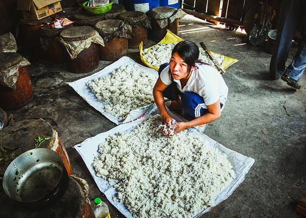 Rice Wine Maker
