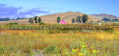 pink-barn_6576