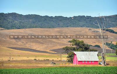 pink-barn_6575