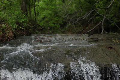 2011 Our Creek_0017