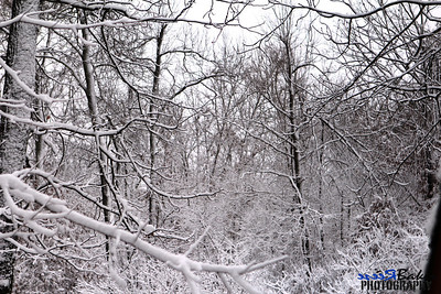 2012 Snow Dec 26th_0017