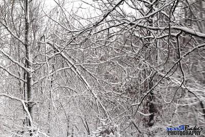 2012 Snow Dec 26th_0009