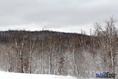 2012 Snow Dec 26th_0025