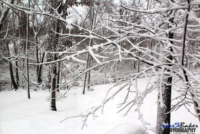 2012 Snow Dec 26th_0011