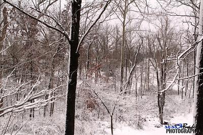 2012 Snow Dec 26th_0014