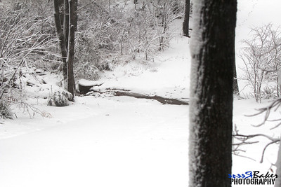 2012 Snow Dec 26th_0004