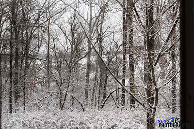2012 Snow Dec 26th_0018