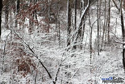 2012 Snow Dec 26th_0015