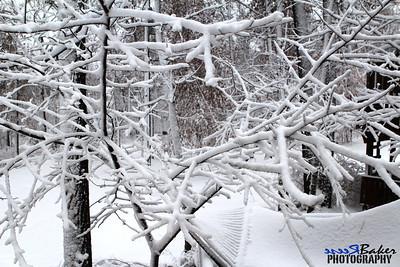2012 Snow Dec 26th_0013