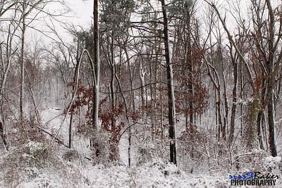 2012 Snow Dec 26th_0021