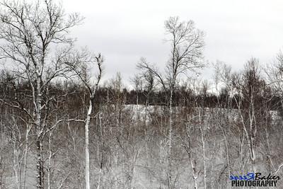 2012 Snow Dec 26th_0027