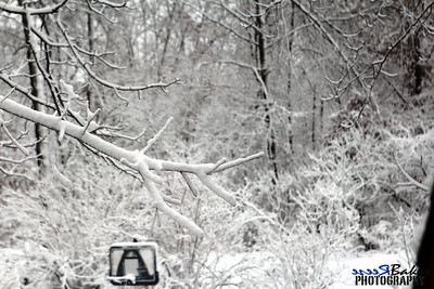 2012 Snow Dec 26th_0012