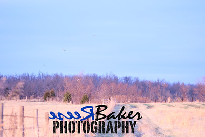 2013 Hawks_0012