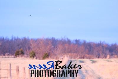 2013 Hawks_0011