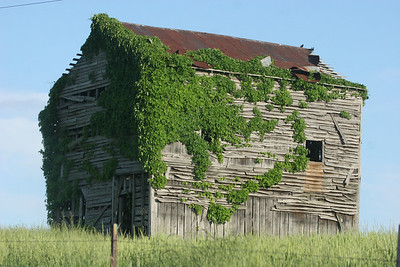 2014 may belt barn_0002