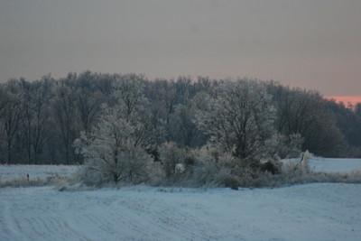 2014 Snow_0002