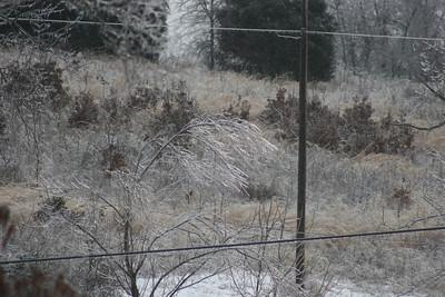 2014 Snow_0037