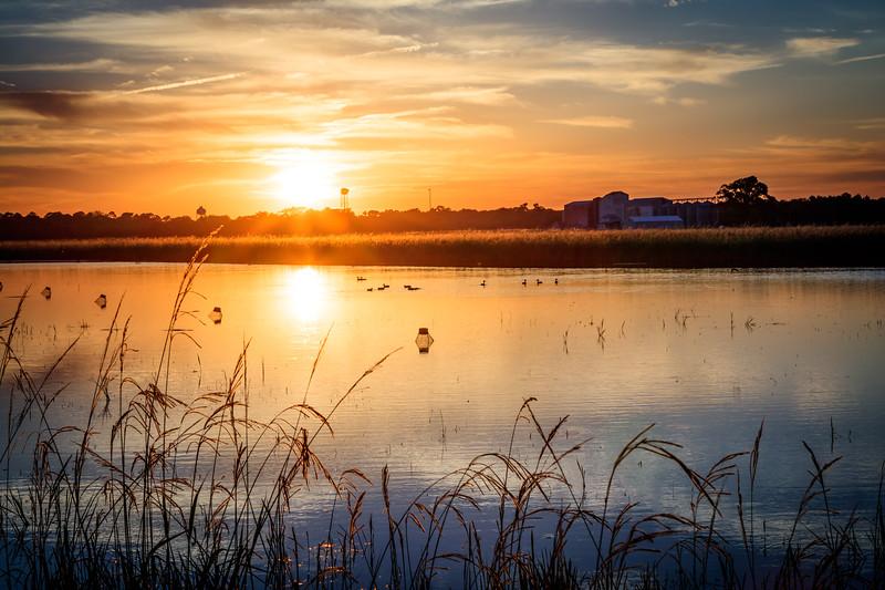 Sunsetting over Crawfish Fields