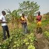 NRC support for agricultural activities in CAR