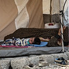 An elderly women and a newborn resting after arriving in Bardarash camp