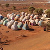 Drought in Baidoa