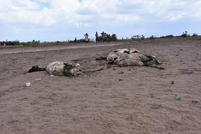 Ethiopia Drought Media 2016