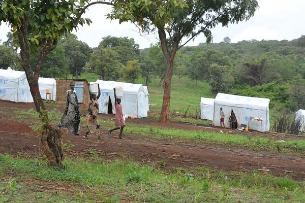 Shelter in Gure