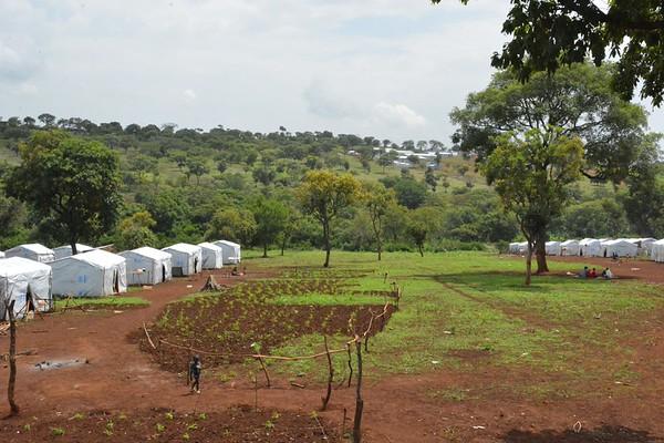 Gure camp