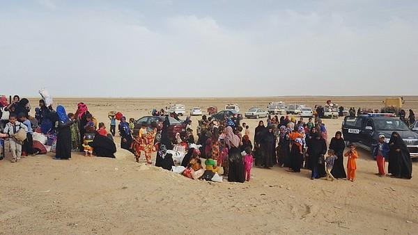 Anbar displacement, May 2016