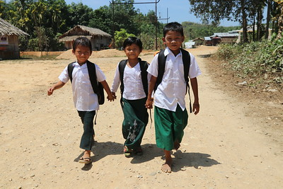 Primary School/Shelter