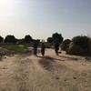 Women fetching water in an IDP settlement in Maiduguri in north eastern Nigeria.