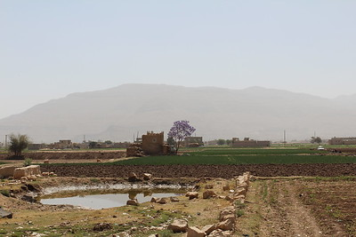 On the Road to Houth, Yemen, April 2017