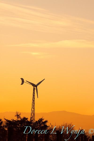 Windmill power_001